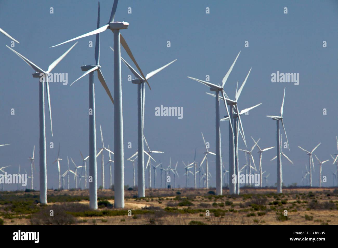 Windkraftanlagen zur Stromerzeugung an Horse Hollow Wind Farm Nolan Texas die weltweit größte Windkraft Stockbild