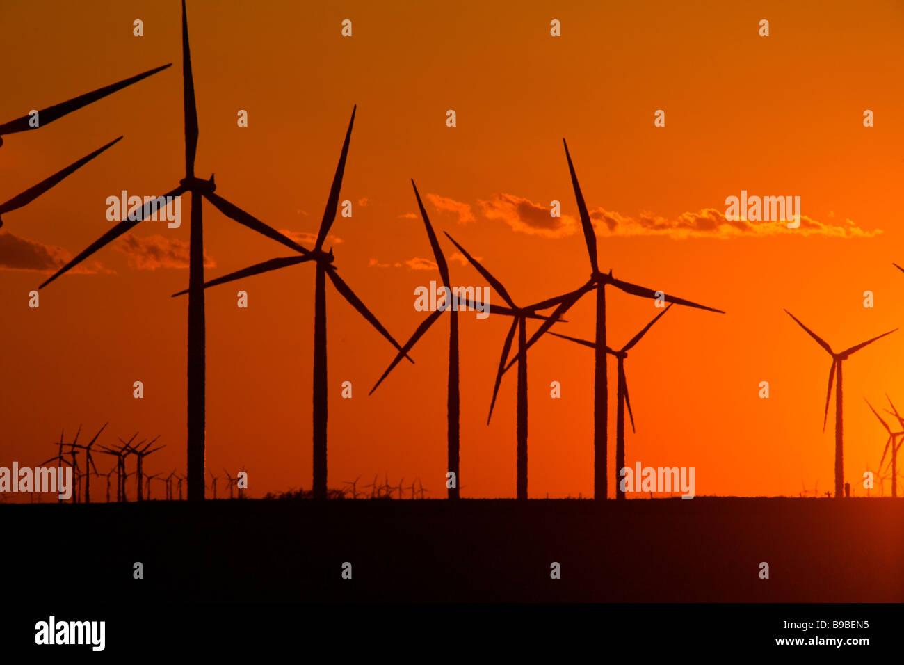 Sonnenuntergang über Windkraftanlagen zur Stromerzeugung an Horse Hollow Wind Farm Nolan Texas Stockbild