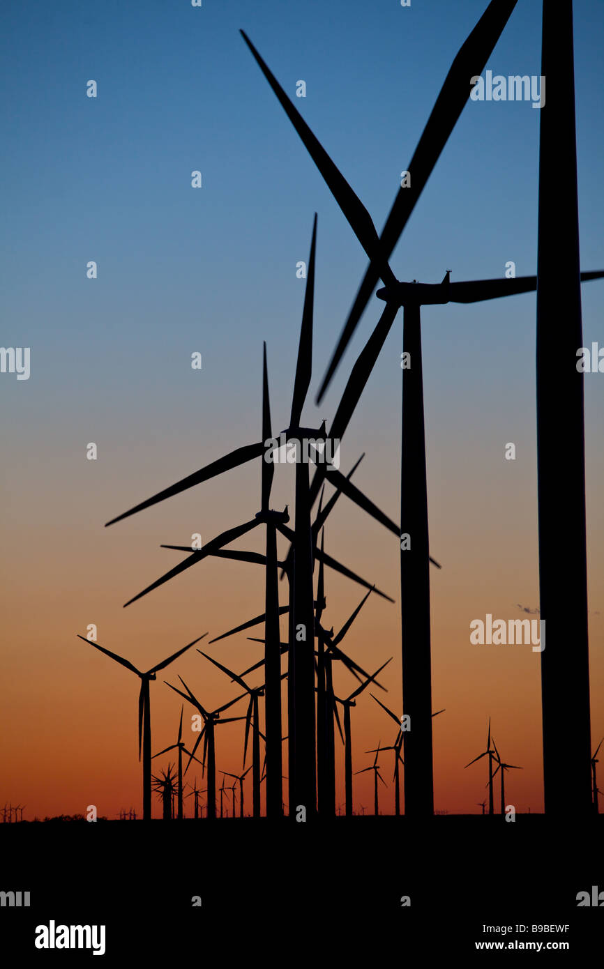 Dämmerung über Windkraftanlagen Stromerzeugung an Horse Hollow Wind Farm Nolan Texas größten Stockbild