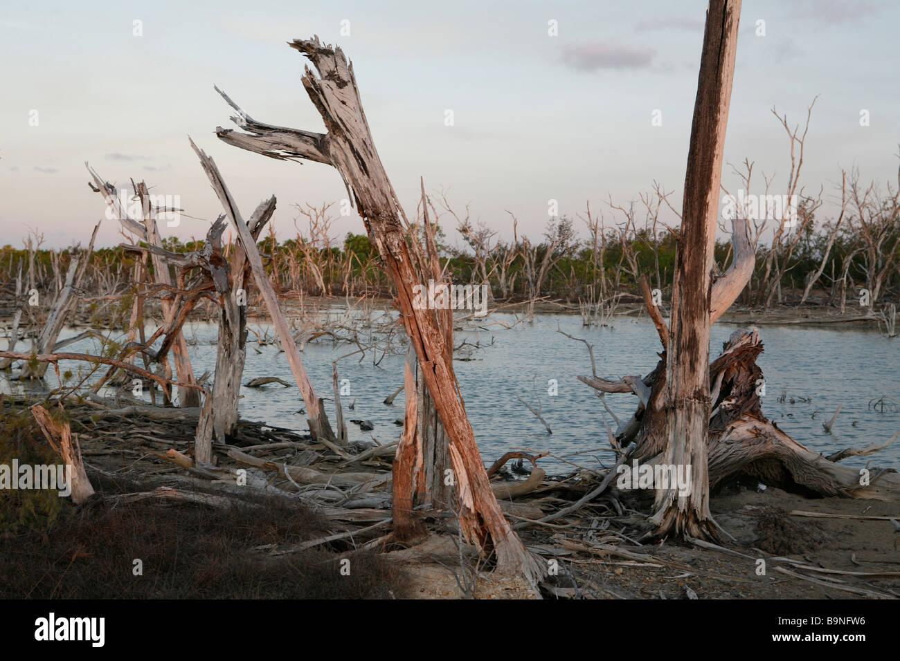 Arnhem Land, Deutschland Stockbild