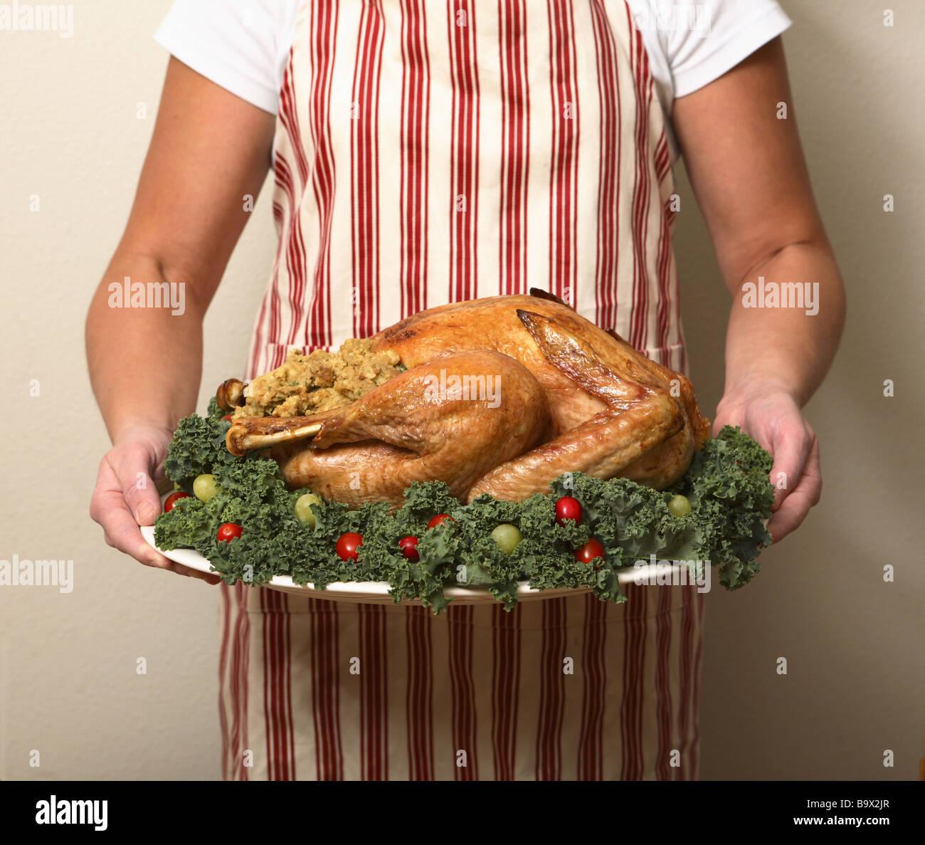 Person Holding Thanksgiving Turkey Stockfotos & Person Holding ...
