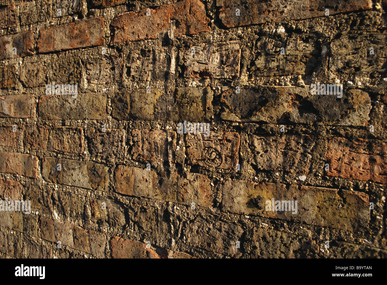 Ziegelmauer, close-up Stockbild
