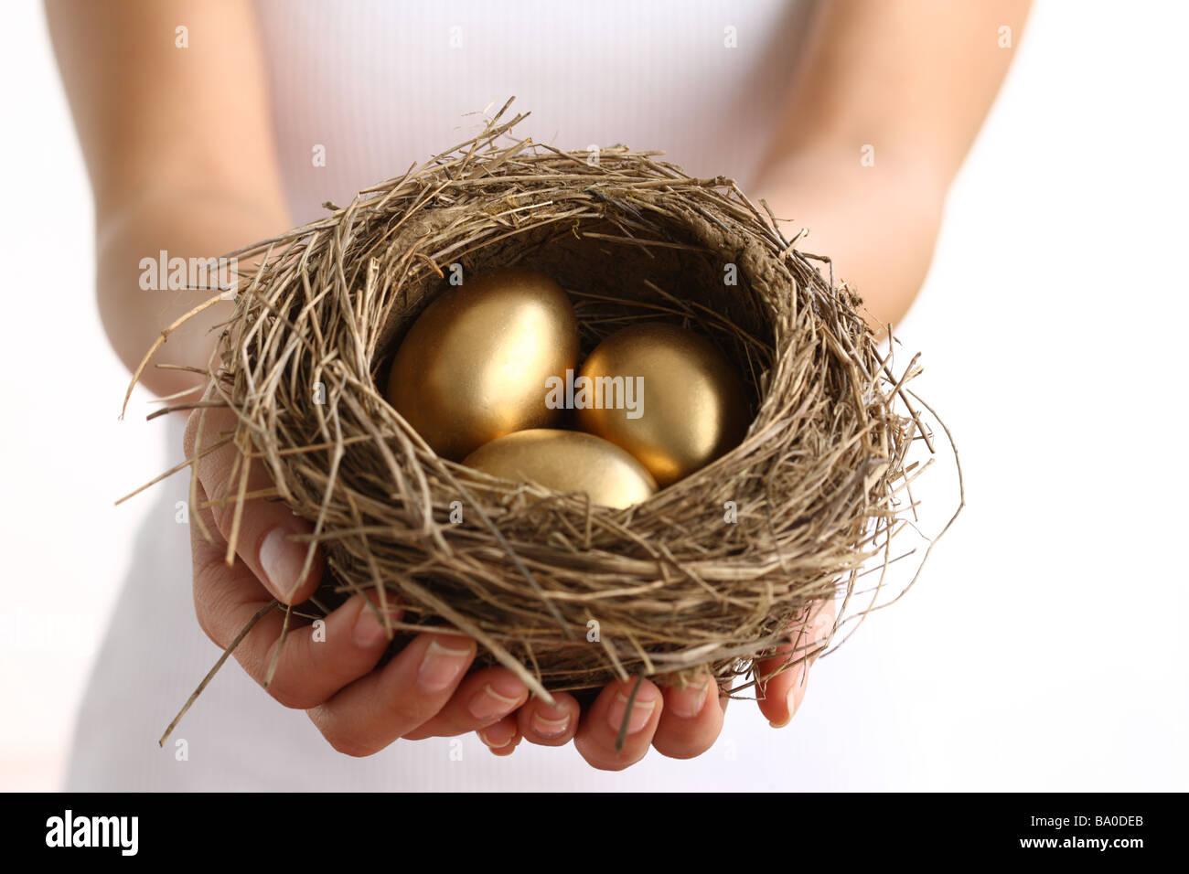 Hände halten Nest mit goldenen Eiern Stockbild