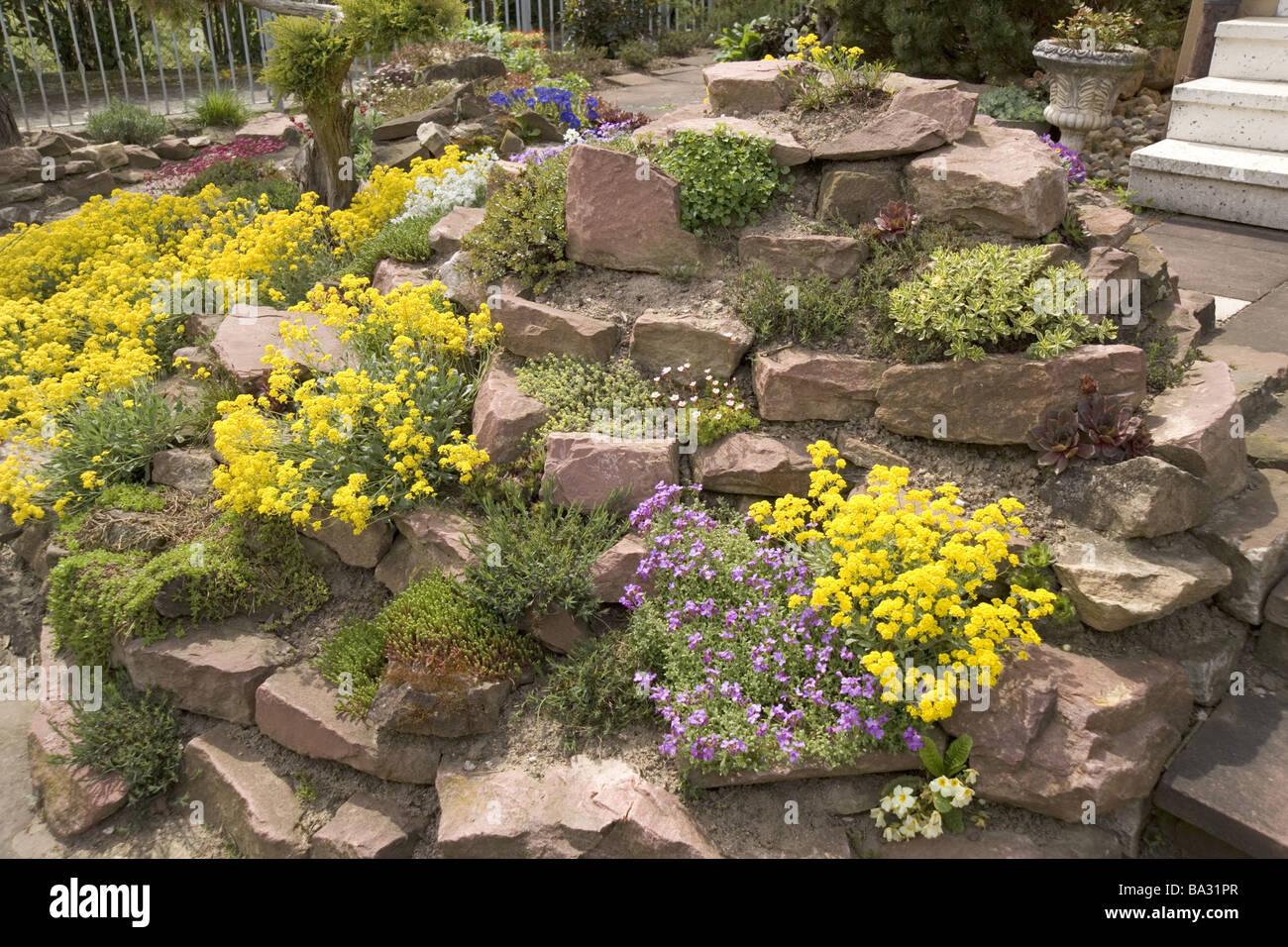 Steingarten Detail Vegetation Botanik Garten Formation Gartensteine
