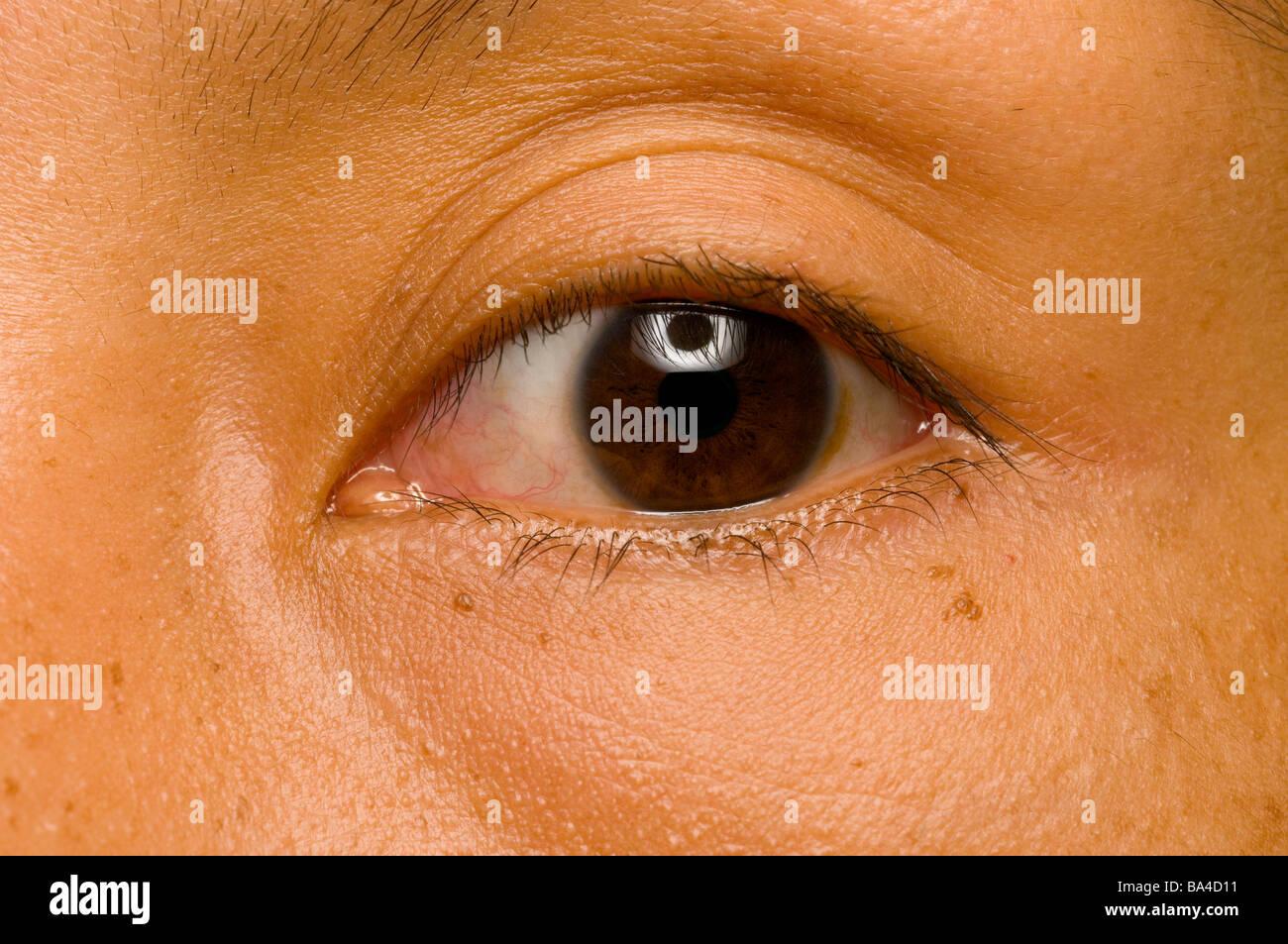 Schwarz Oder Dunkel Braune Augen Stockfoto Bild 23454957 Alamy