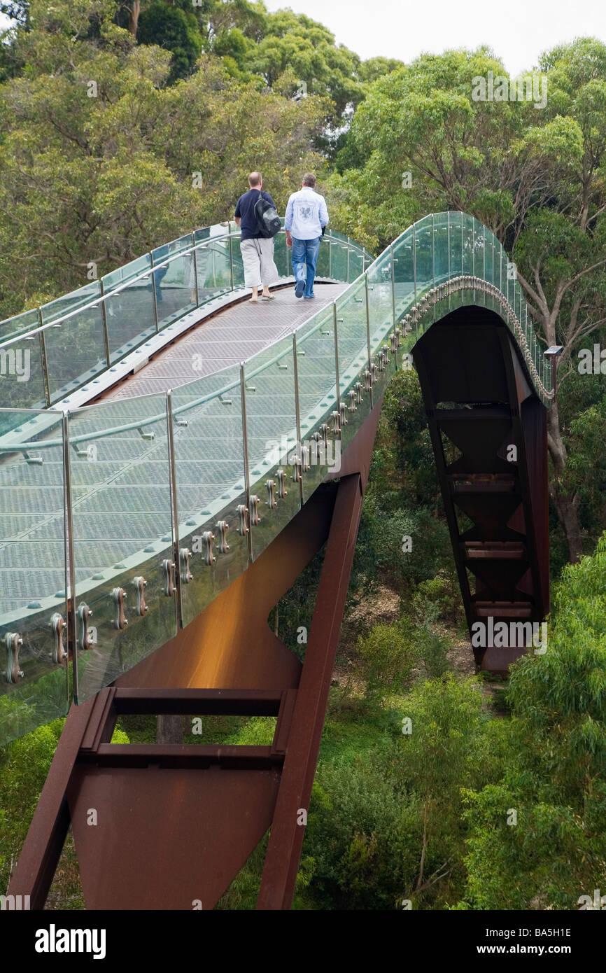 Besucher zu Fuß über den Baumwipfeln auf dem Gehweg der Föderation im Kings Park.  Perth, Western Stockbild