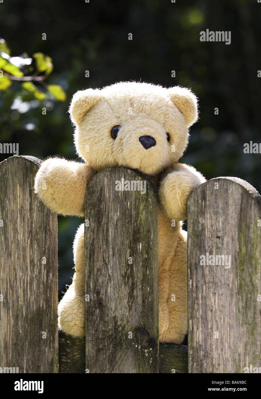 Holz Zaun Detail Teddy Bretterzaun Zaunlatten Die Holz Lamellen