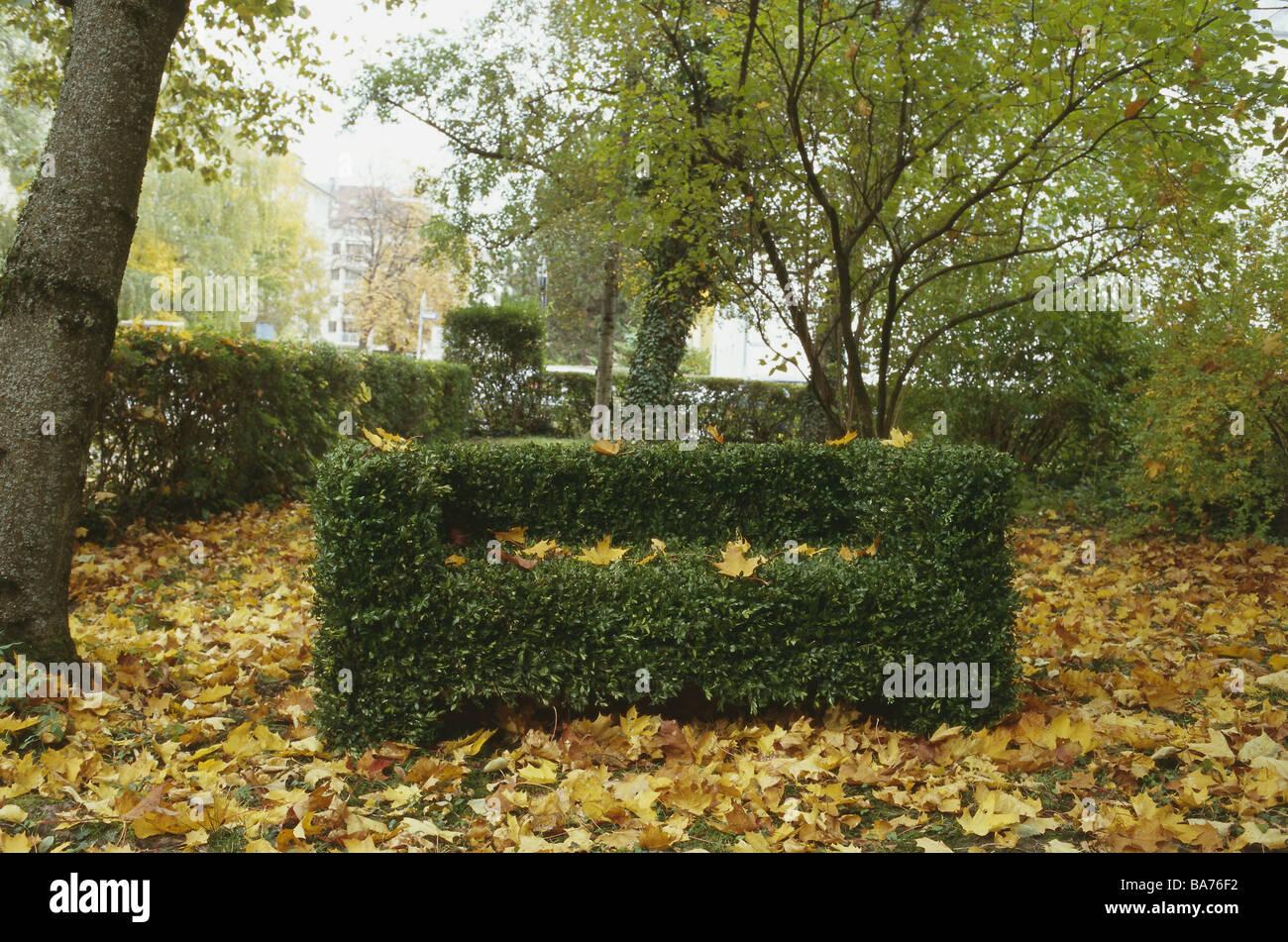 Park Bäume 'Bank' Buch Form geschnittene Kunst Herbst Garten Natur Pflanzen Buchsbaum schneiden Form Stockbild