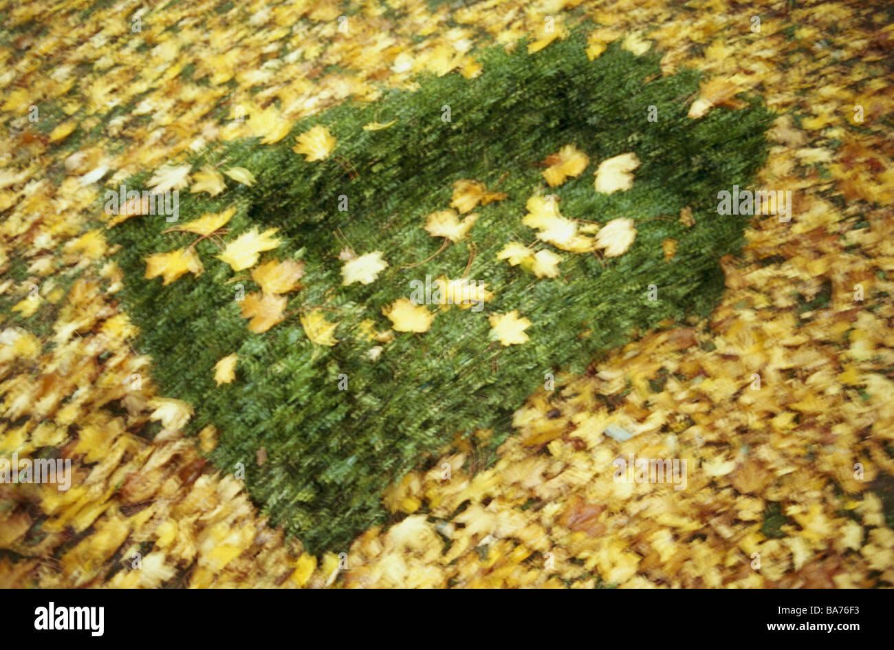 Park Bäume 'Bank' Buch Form geschnittene Kunst Herbst von oben Unschärfe Garten Natur Pflanzen Stockbild