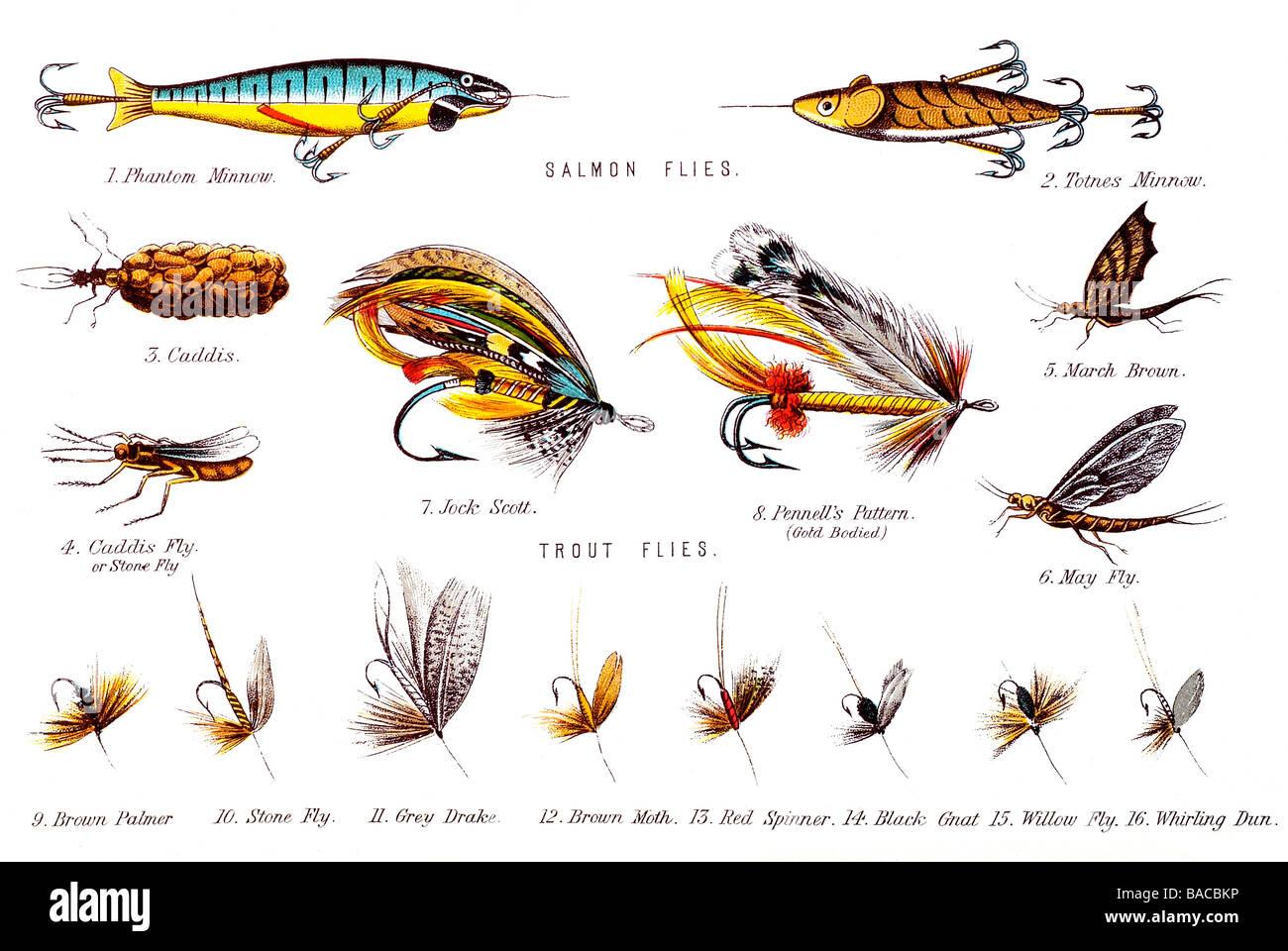 Fliegen Fischkoeder Schmetterling wie Trockenfliegen Koeder Haken fuer B GY 1X