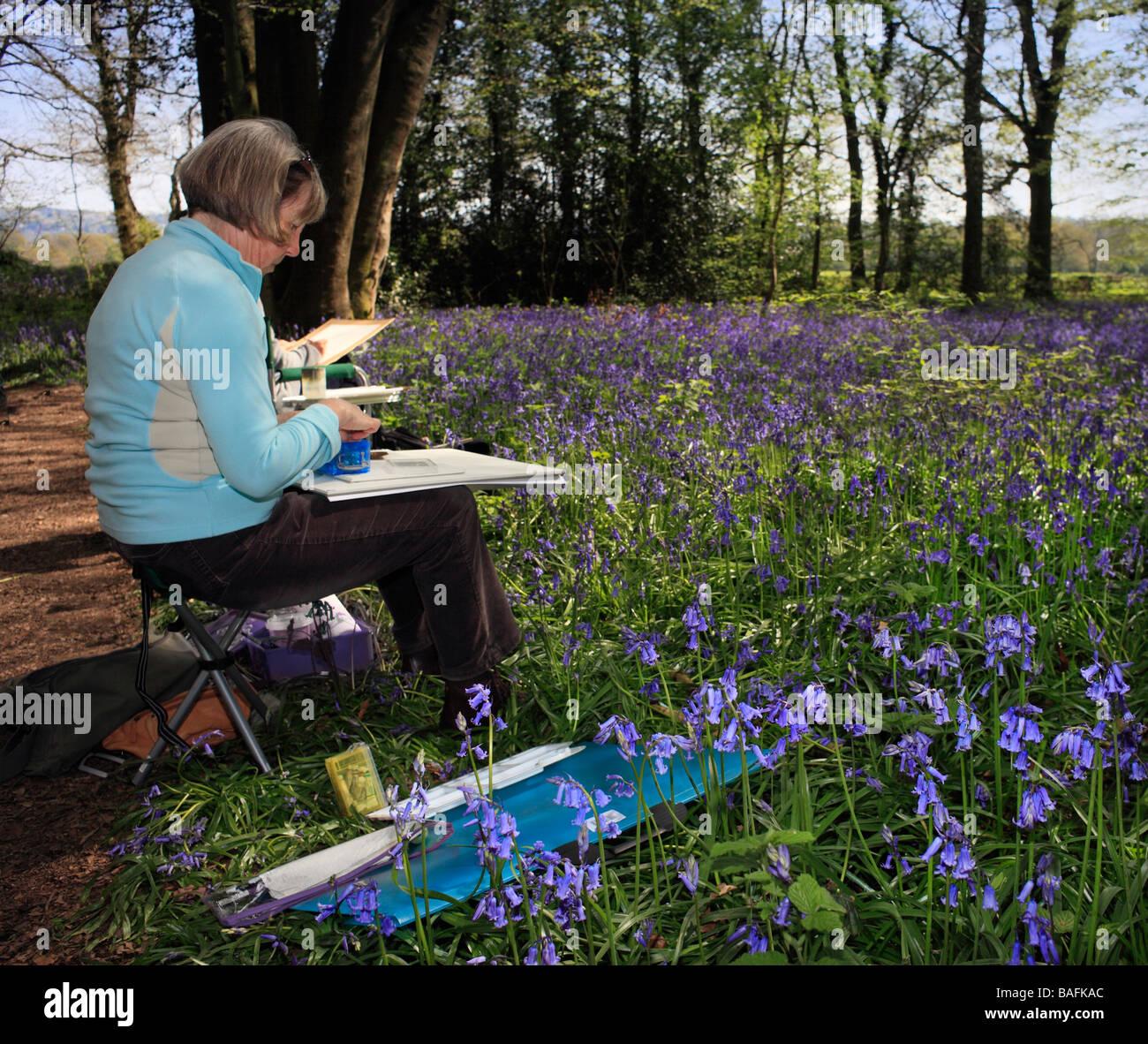 Dame, die Zeichnung einer Glockenblume Szene Staffhurst Woods Surrey England UK Stockbild
