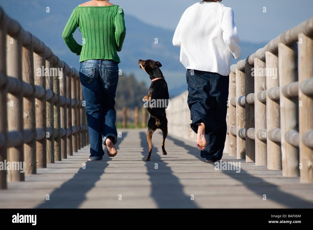 Zwei Menschen, die laufen mit Hund Stockbild
