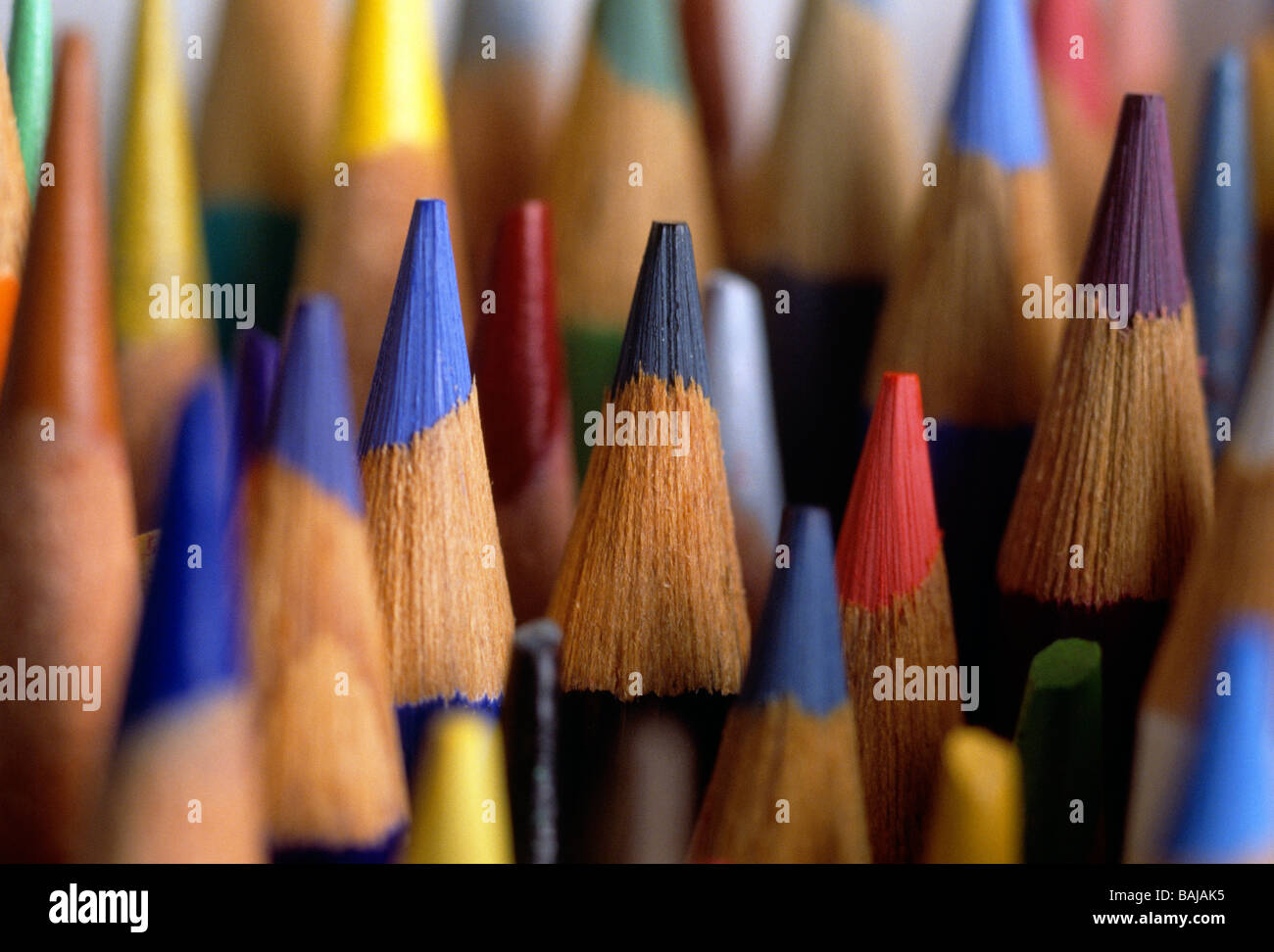 Green Draw Sketch Stockfotos & Green Draw Sketch Bilder - Seite 2 ...