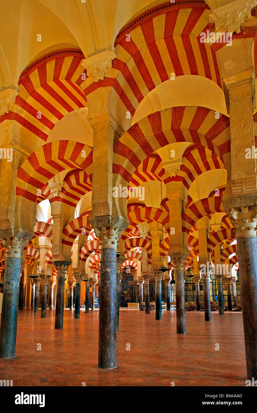 Schiffen der Mezquita (-Moschee-Kathedrale), Córdoba, UNESCO-Weltkulturerbe, Provinz Córdoba, Andalusien (Andalusien). Stockfoto