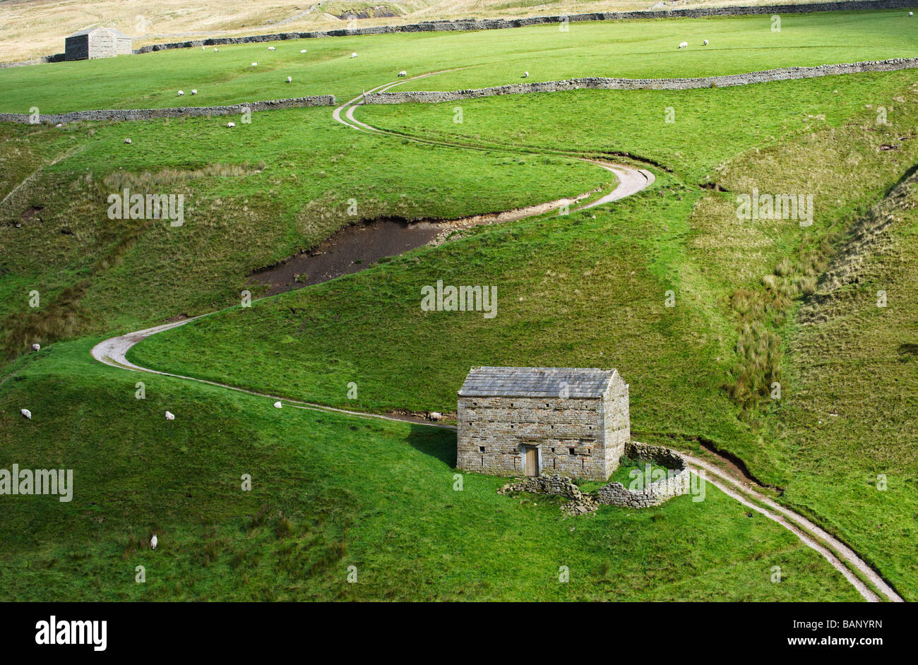 Oberen Swaledale Yorkshire UK Stockfoto