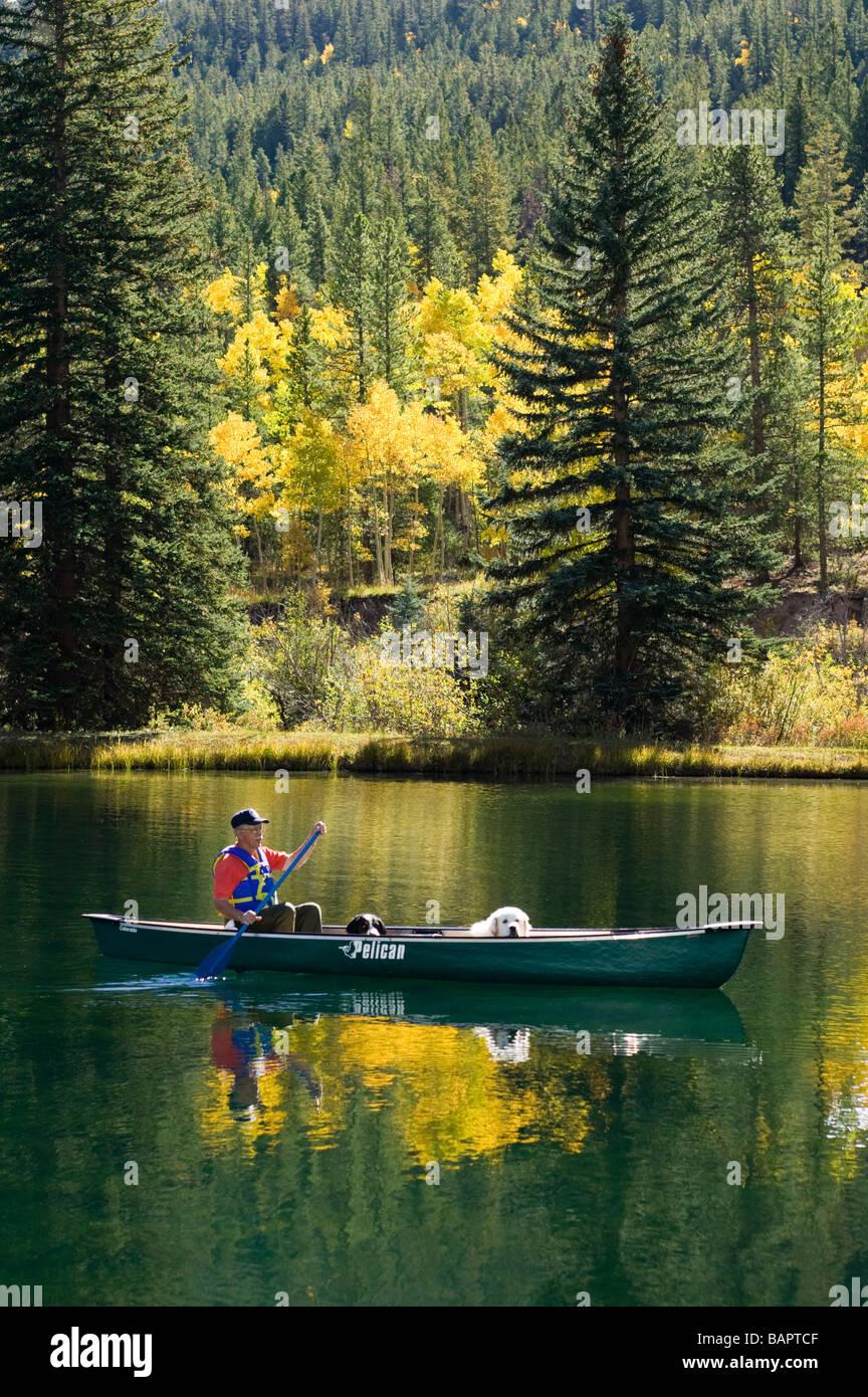 60 Ish Mann paddeln Kanu mit seine emotionale Unterstützung Hunde wie ein Berner Sennenhund und ein Pyrenäenberghund Stockbild