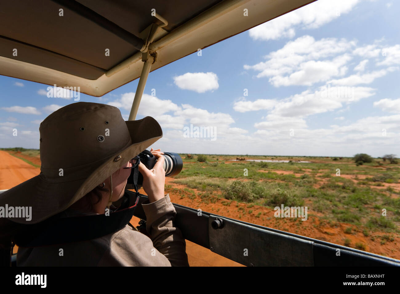 Frau Abfotografier während Safari Tour, Tsavo East National Park, Küste, Kenia Stockbild