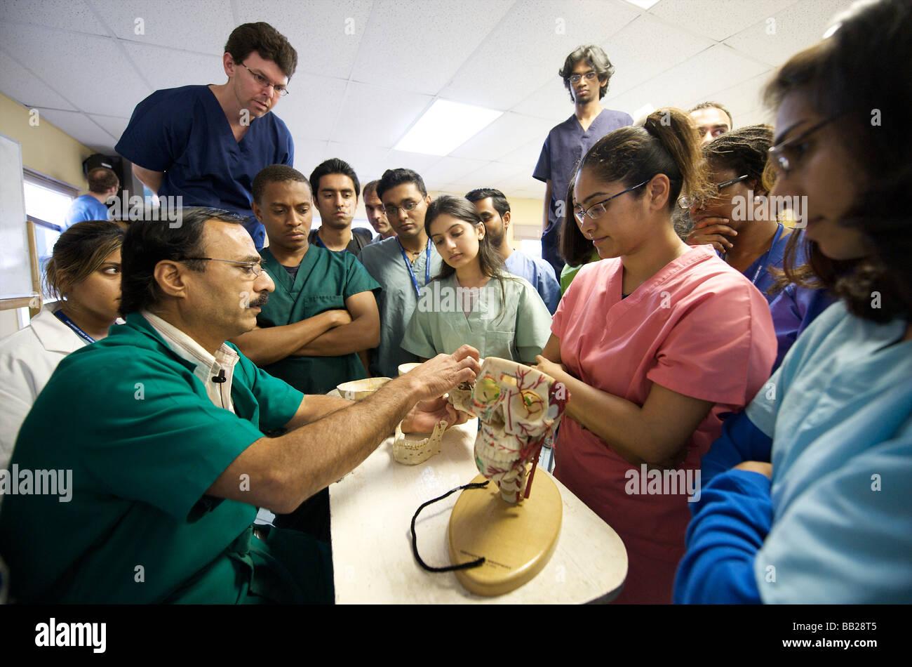 Saba unten Medizinstudenten im Anatomie-Unterricht Stockfoto, Bild ...