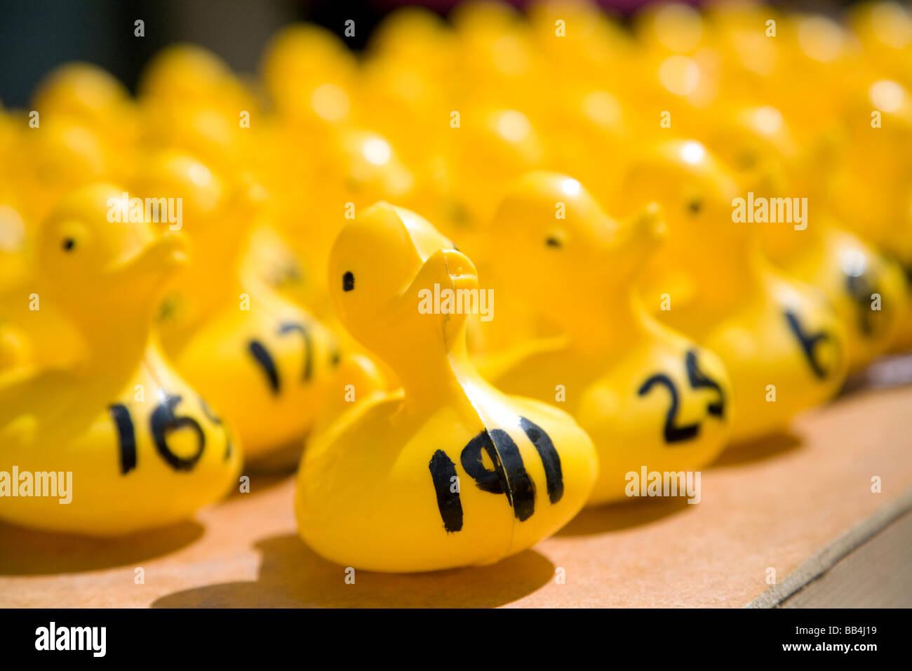 Teilnehmer an einer Charity Kunststoff Entenrennen in Wallingford, Oxfordshire, Vereinigtes Königreich Stockbild