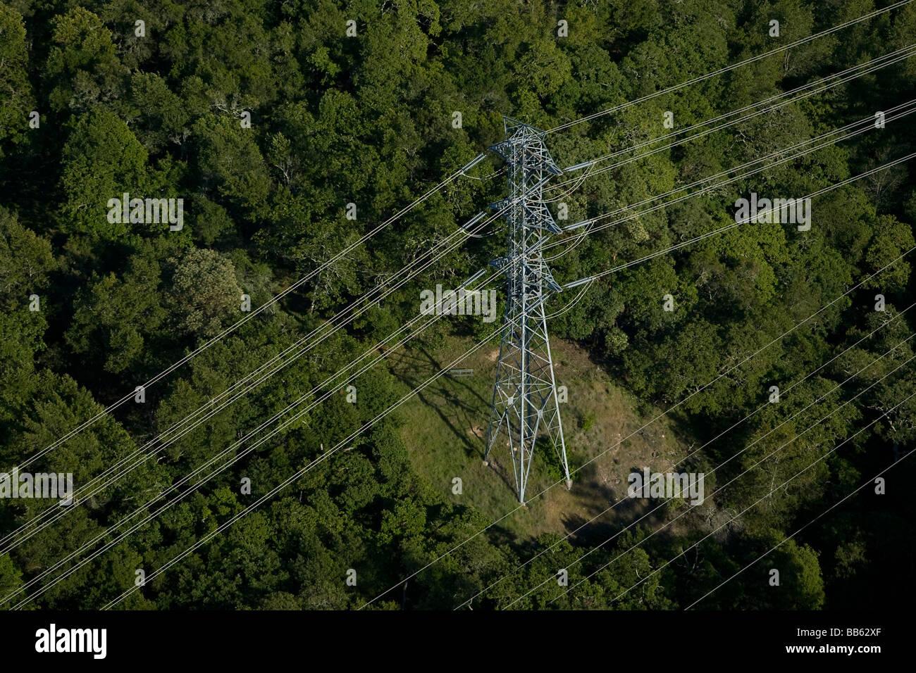Luftaufnahme über Stromleitungen über Sonoma county Kalifornien Eiche Bäume versandkostenfrei Stockbild