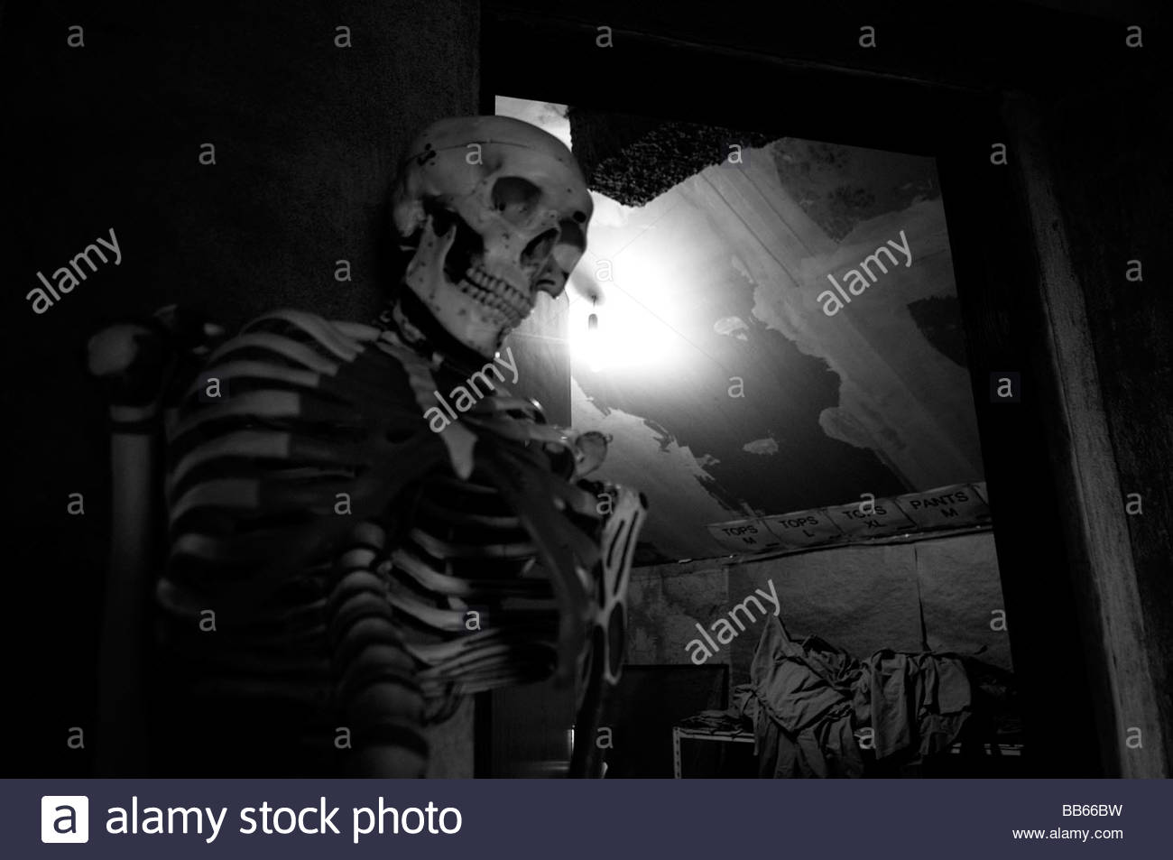 Modell des menschlichen Skeletts in einen Abstellraum in Leichenhalle Einrichtung der ICMP-Kommission der vermissten Stockbild