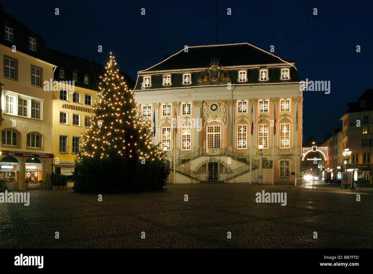 Weihnachtsbaum bonn