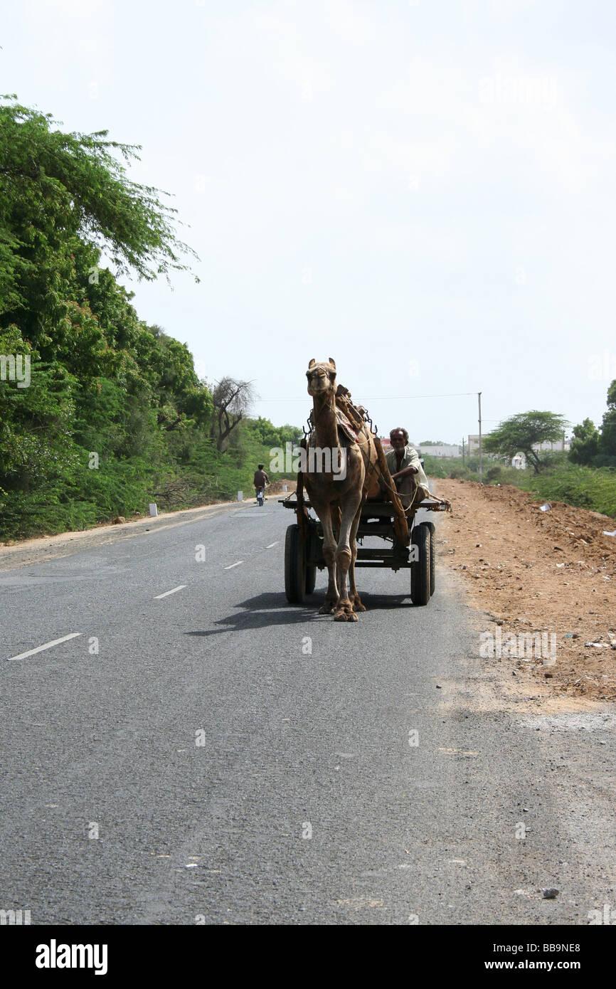 Transportmittel, Indien Stockbild