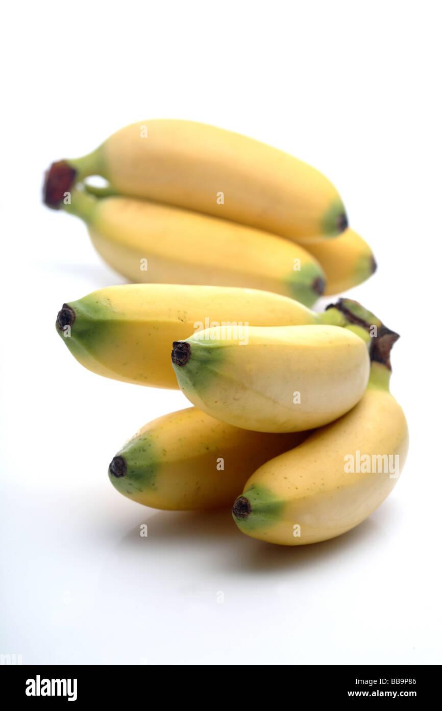 frische Baby-Banane-Früchte Stockbild