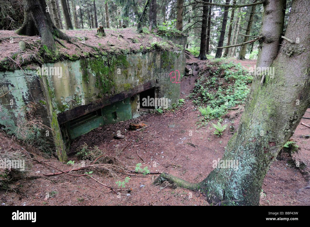 Siegfried Linie Deutsche Bunker Im Huertgenwald Wald Deutschland