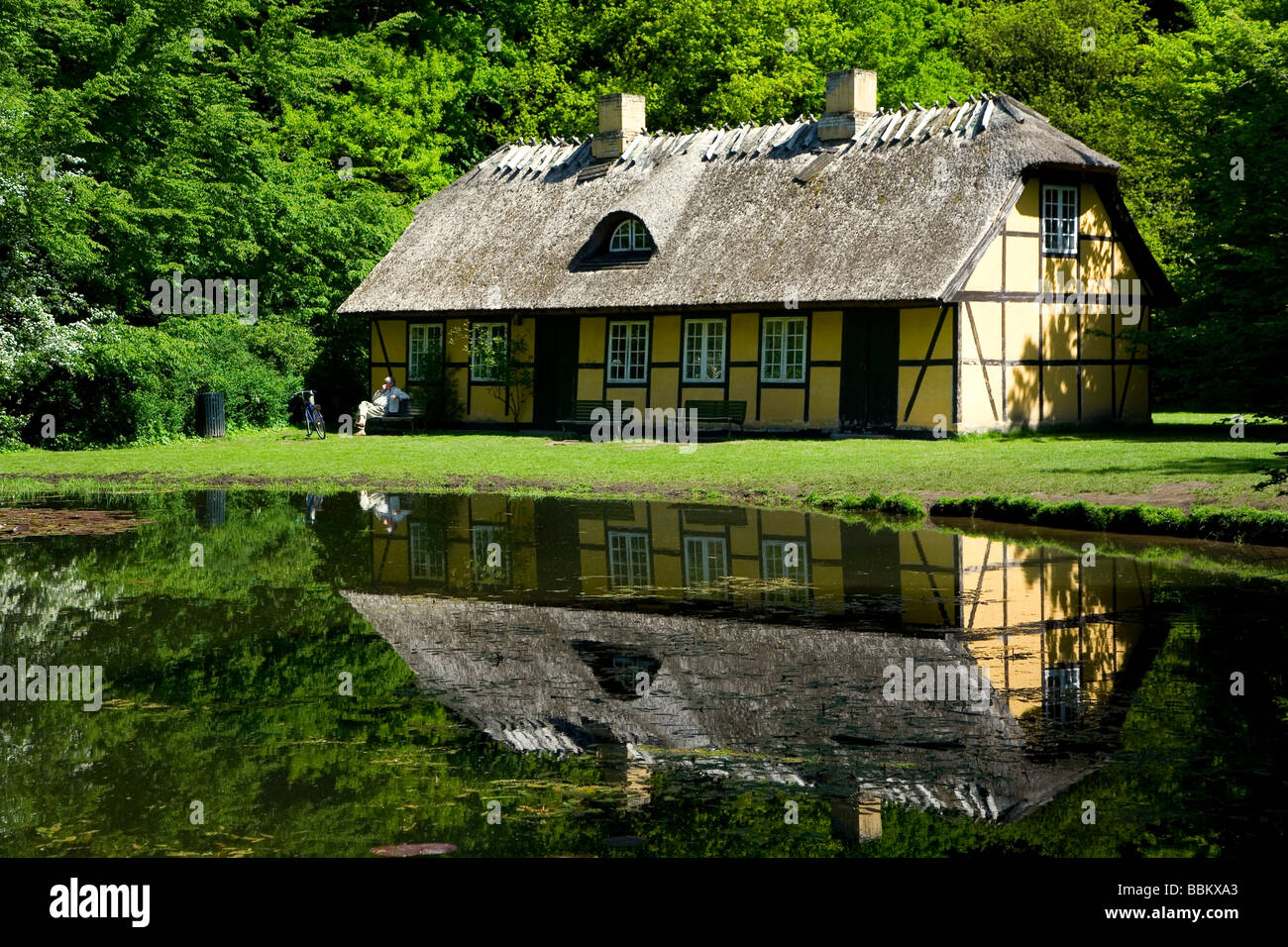 altes haus am wald see d nemark europa stockfoto bild 24409339 alamy. Black Bedroom Furniture Sets. Home Design Ideas