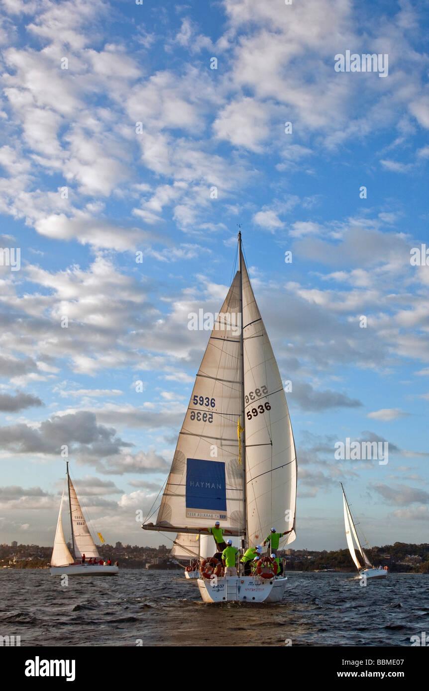 New South Wales in Australien. Segeln am späten Nachmittag im Hafen von Sydney. Stockbild