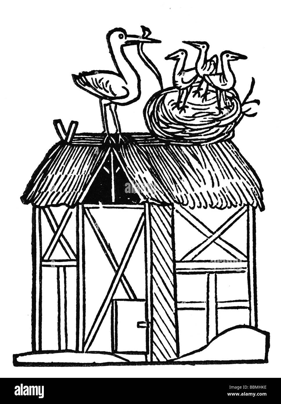 Storch füttert seine jungen mit einer Schlange, Holzschnitzereien aus dem Mittelalter Stockbild