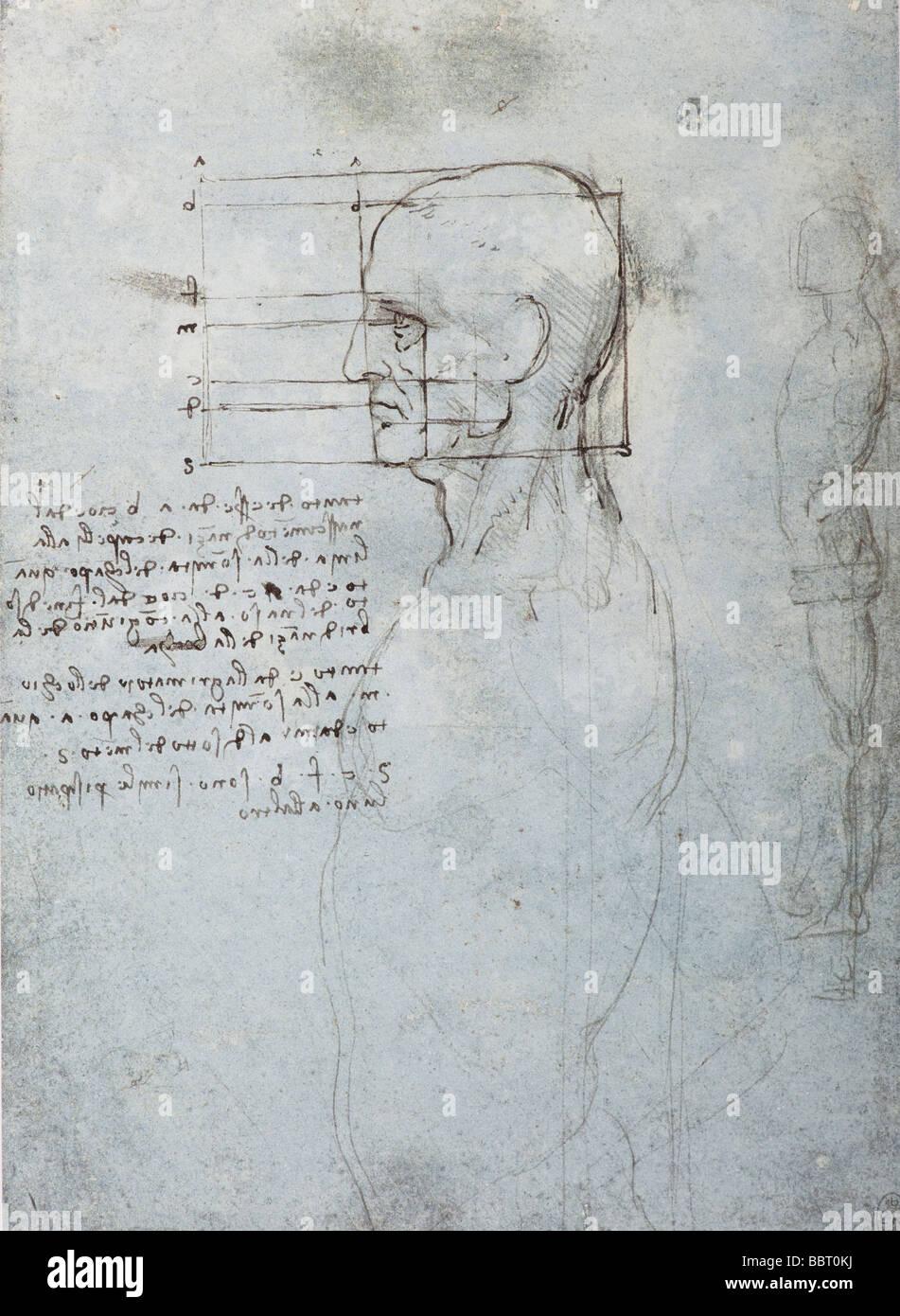 Studie über die Proportionen von Kopf und Körper von Leonardo da Vinci Stockbild