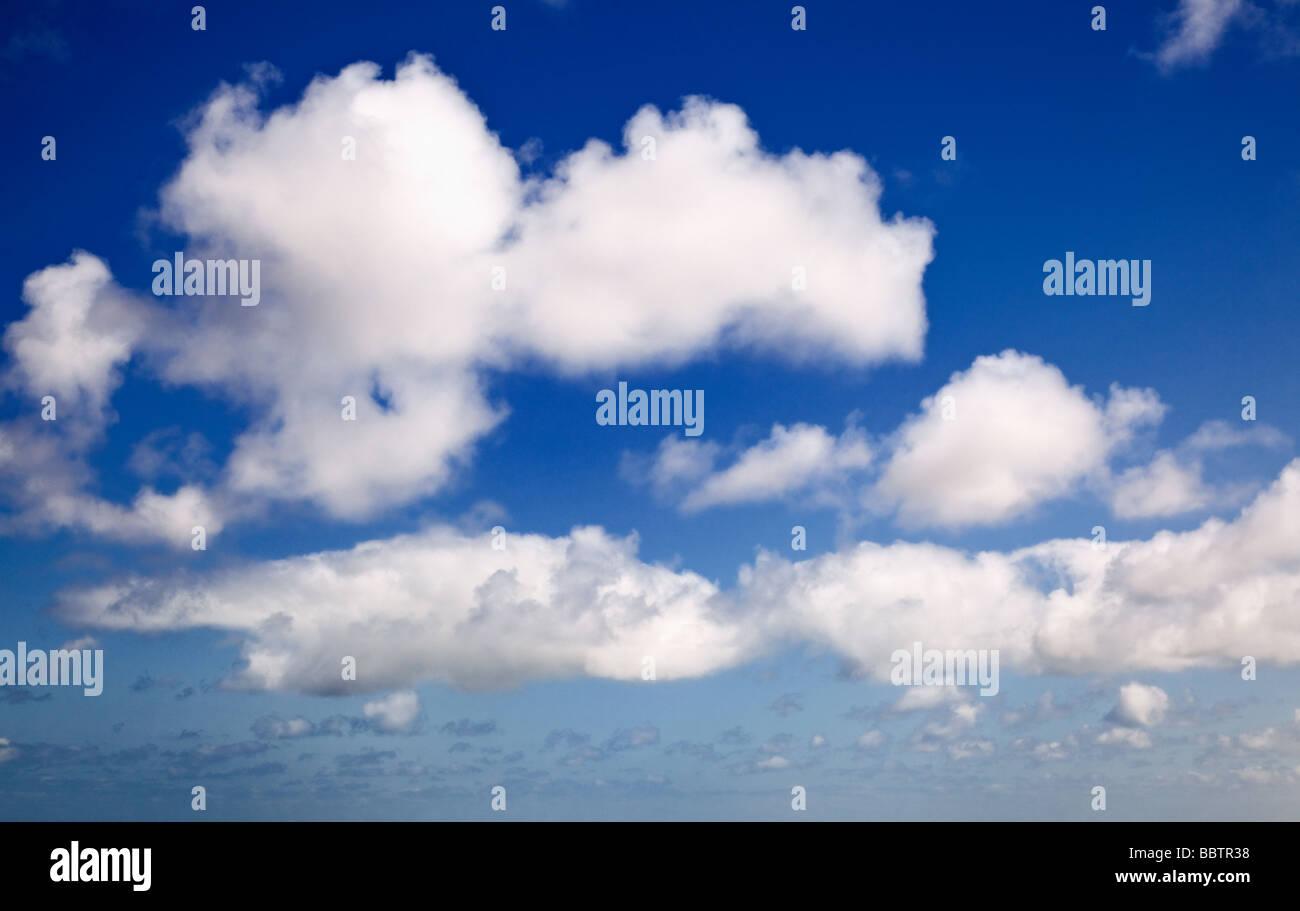 Blick auf einen blauen Himmel mit Cumulus-Wolken Stockbild