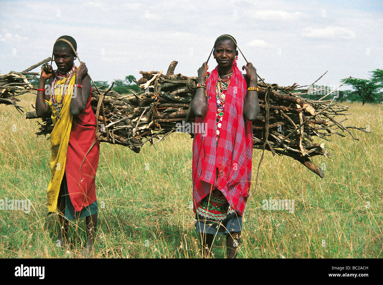 african woman carrying firewood stockfotos african woman carrying firewood bilder alamy. Black Bedroom Furniture Sets. Home Design Ideas