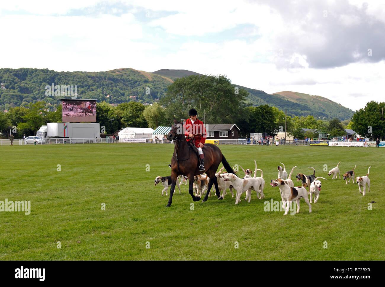 Jäger und Hunde in den drei Grafschaften Show, Great Malvern, UK Stockbild