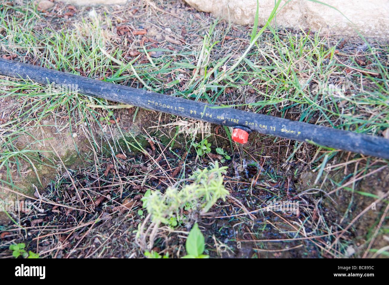 Garten Bewasserung System Tropfchenbewasserung Bewasserung Von