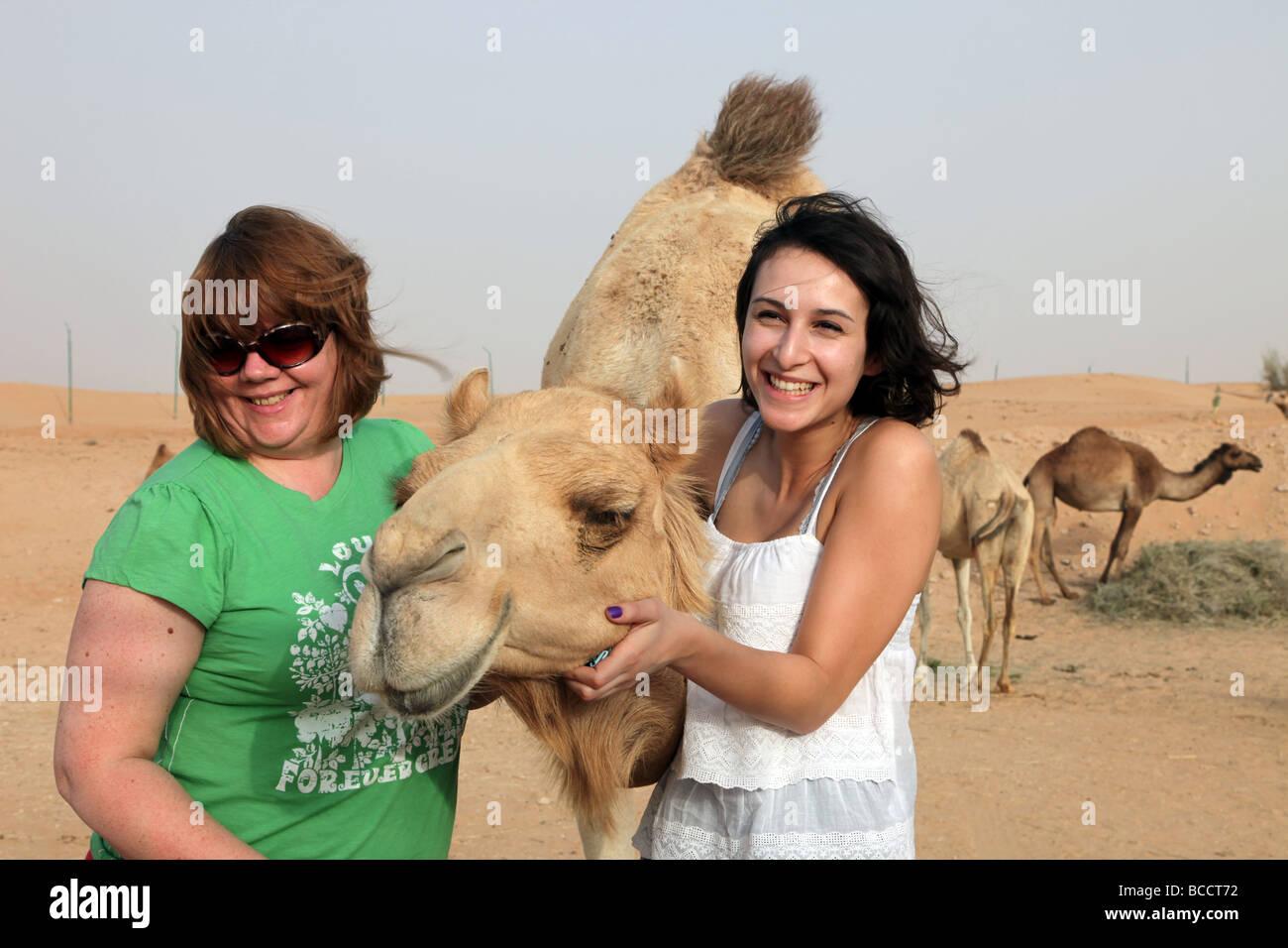 Kamel zu zähmen Dubai Stockbild