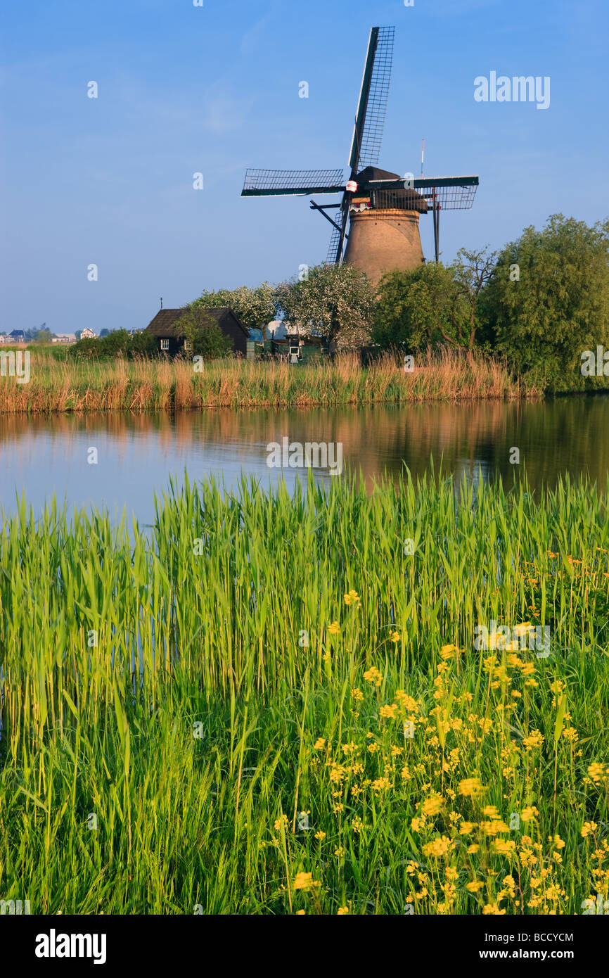 Windmühlen in Kinderdijk, Niederlande Stockbild