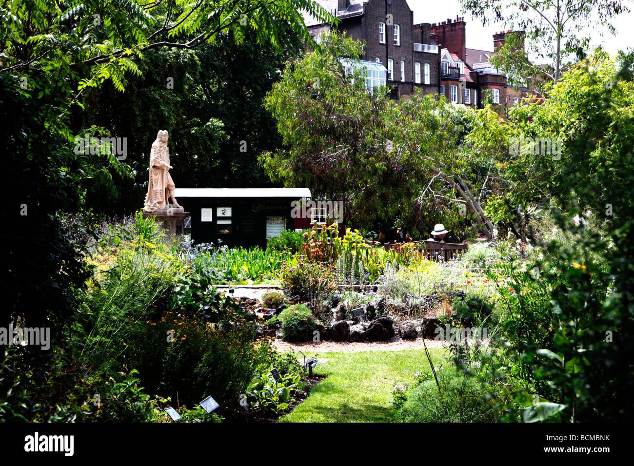chelsea physic garden london ltesten botanischen garten und statue von hans sloane london. Black Bedroom Furniture Sets. Home Design Ideas