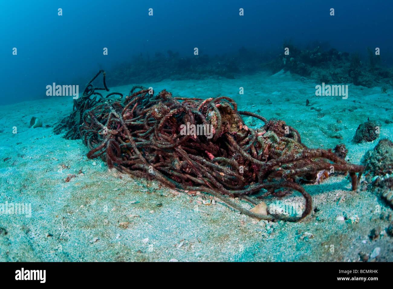Verworfen, Seil und Ablagerungen an einem Korallenriff in Palm Beach County FL diese Ablagerungen oft bricht Korallen Stockbild