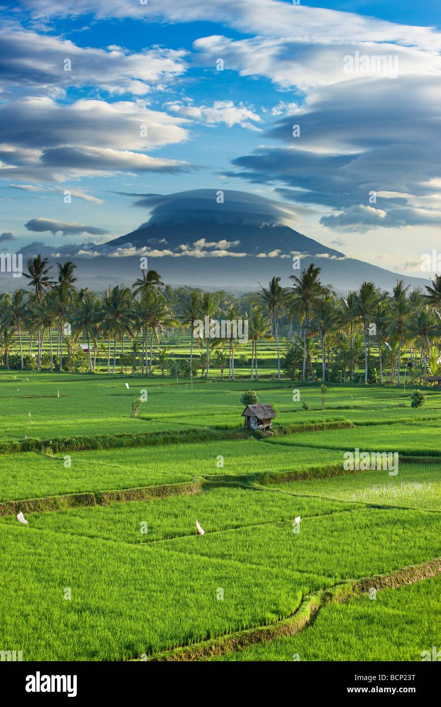 ein dramatischer Himmel über die vulkanische Gipfel des Gunung Agung und den Reisfeldern, in der Nähe Stockbild