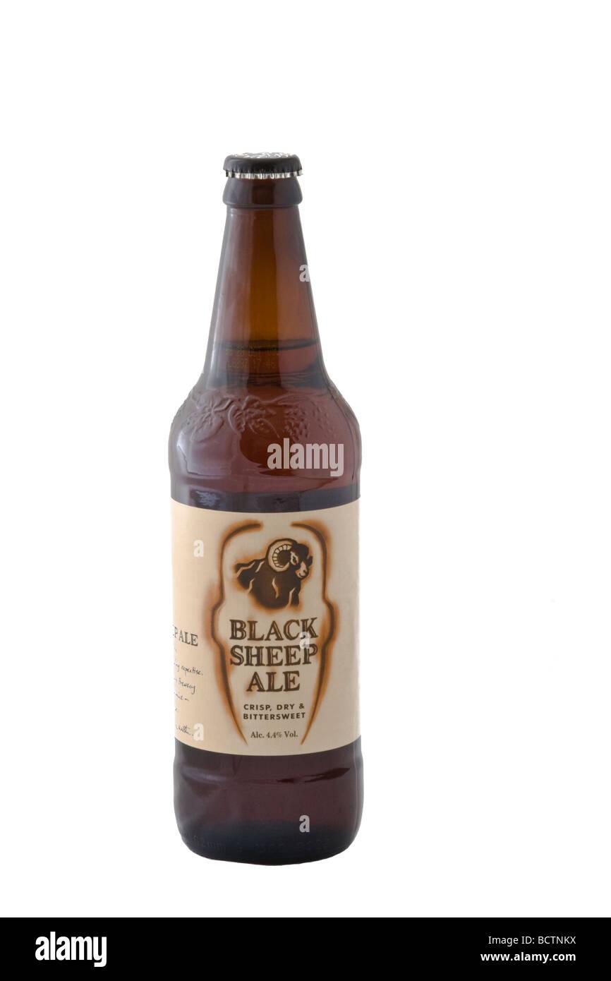 Flasche Black Sheep Ale gebraut in Masham, Yorkshire, Black Sheep Brewery PLC Stockbild
