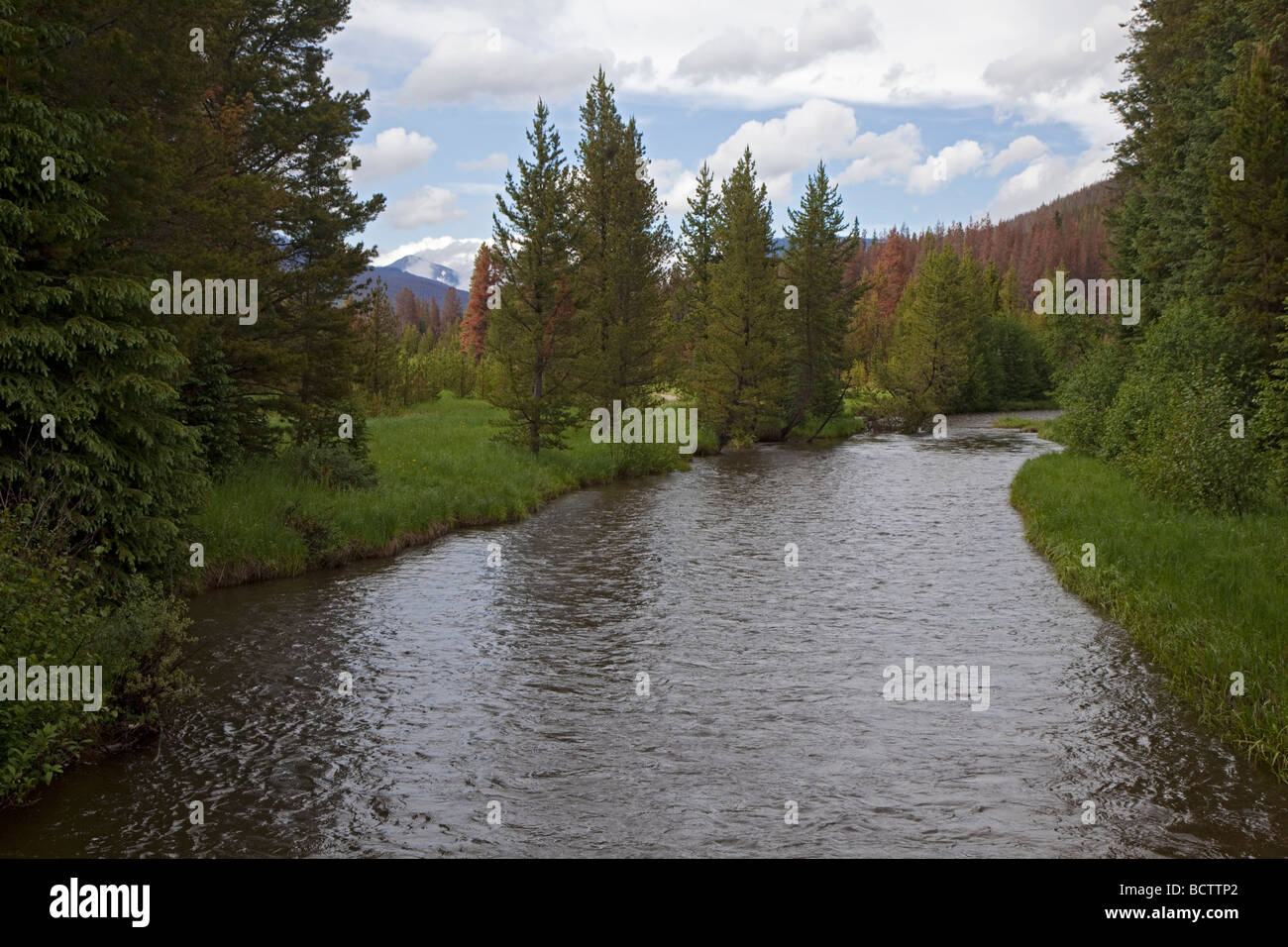 Rocky Mountain Nationalpark Colorado der Oberlauf des Colorado River Stockbild