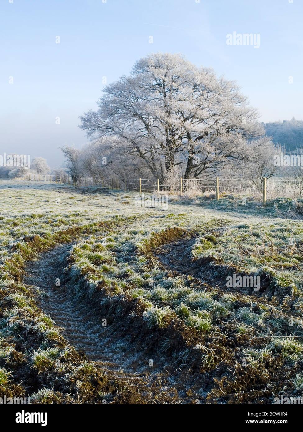 Eine schöne weiße Winterlandschaft, an einem klaren sonnigen Tag in der Nähe von Longnor in den Peak Stockbild