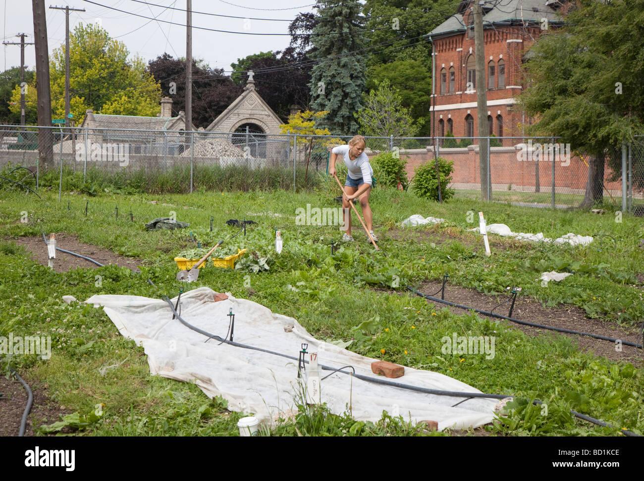 Garden Hoe Weed Stockfotos & Garden Hoe Weed Bilder - Alamy