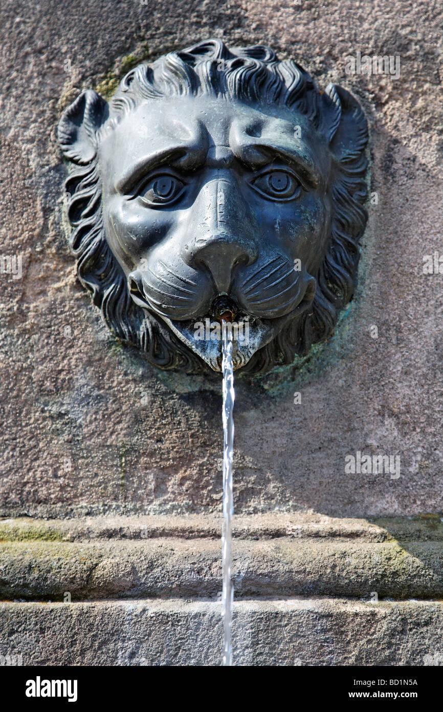 Löwenkopf, Dürer-Pirckheimer-Brunnen, Brunnen der Freundschaft, Max Platz, Altstadt, Nürnberg, Mittelfranken Stockbild