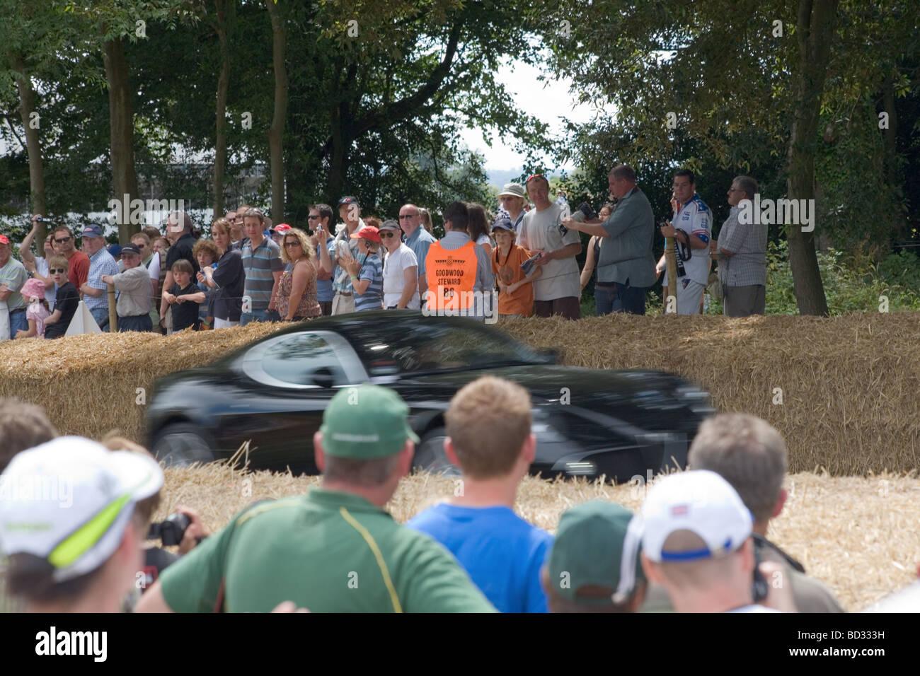 Supersportwagen auf die Hillclimb Strecke auf dem Goodwood Festival of Speed 2009 - Bewegungsunschärfe Stockbild