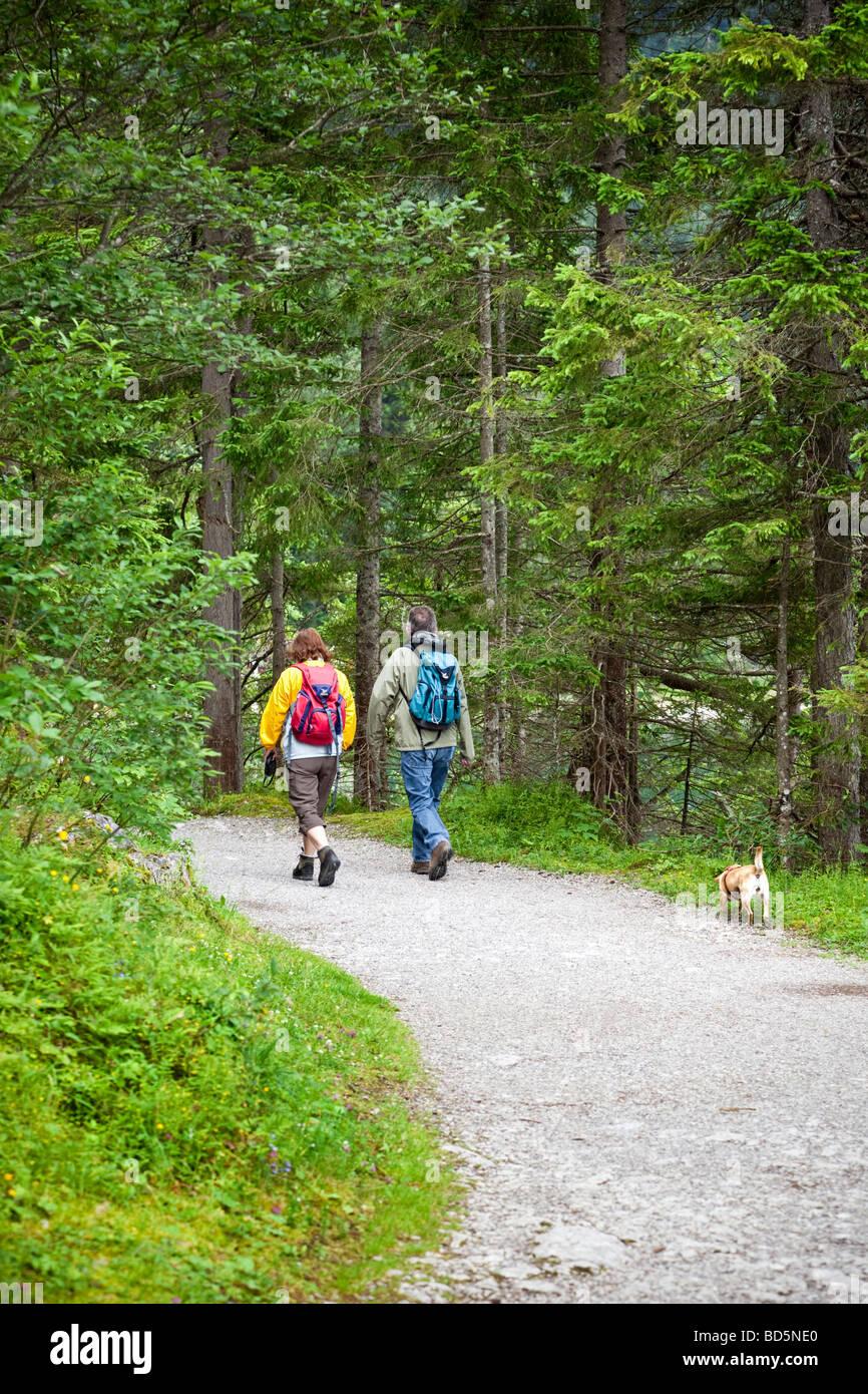 Paare, die einen Hund auf einem Waldweg in Bayern Stockbild