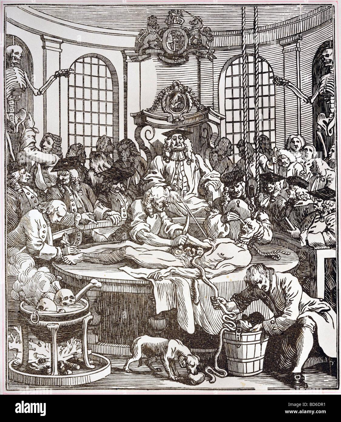 Medizin, Anatomie, Karikatur, Dissektion, Kupfer Kupferstich von ...